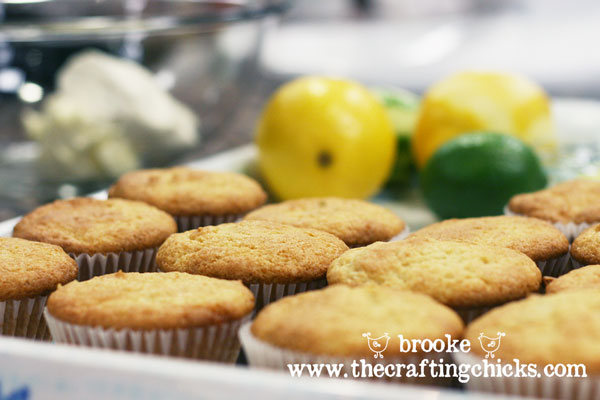citrus-cupcakes-thanksgiving-point