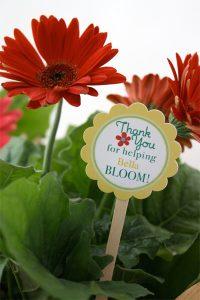 Teacher-Appreciation-Flowers skiptomylou.org