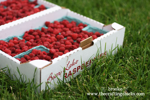 flat-of-bear-lake-raspberries