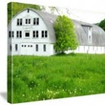 Free 8×10 Canvas Prints!