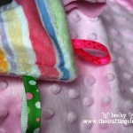 Minky Taggie Blanket