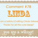 Winner of The Lacey Placey giveaway!