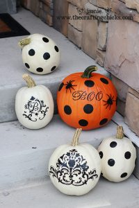 small pumpkins 1
