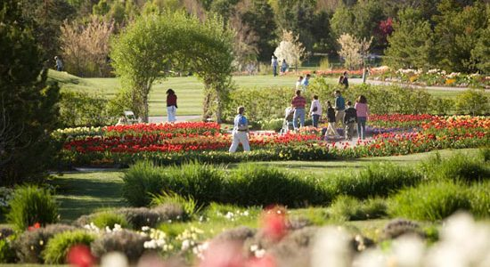Thanksgiving Point Tulip Festival {Utah Giveaway}