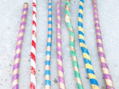 Summer Walking Sticks on Channel 2's Fresh Living at 1pm MST