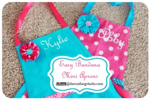 sm apron top photo