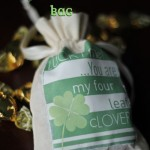 Lucky Me St. Patrick's Day Bag