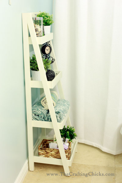 Luxury Bath Ladder Storage Design  Make Your Bathroom More Cute And Cool
