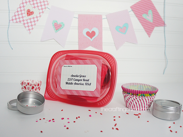 Valentine Party in a Box Happy Mail
