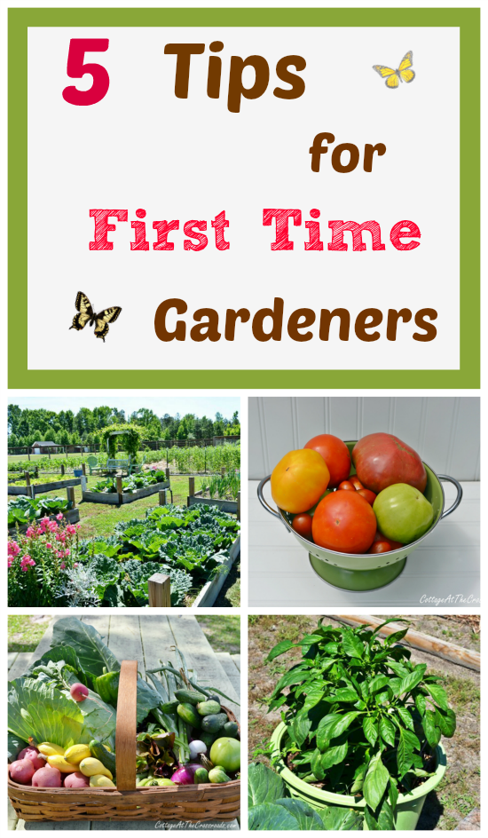 5-Tips-for-First-Time-Gardeners