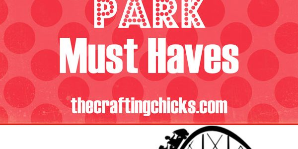 Amusement Park Must-Haves: When Going With Kids