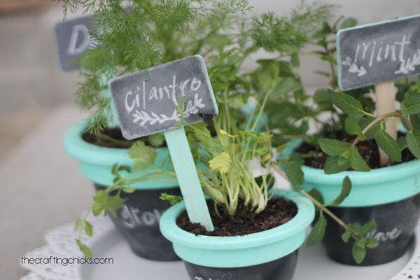 Chalkboard Herb Garden