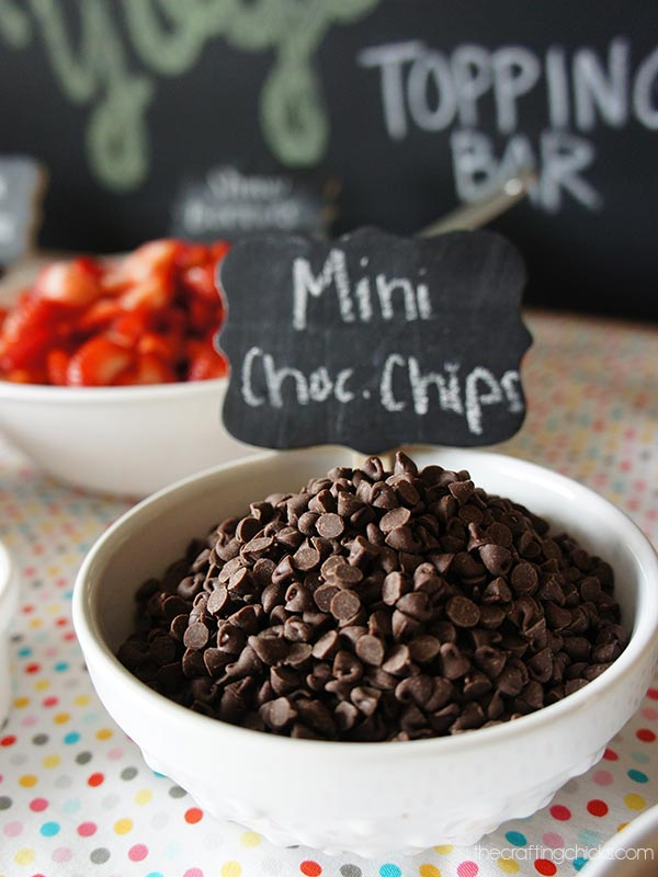fro-yo chocolate chips