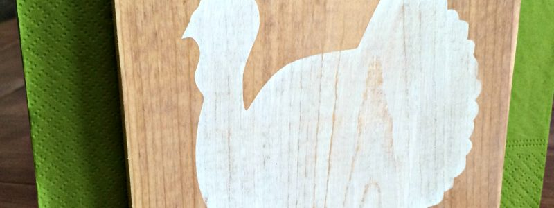 DIY Turkey Napkin Holders