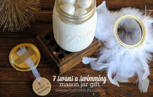 Celebrate one of the 12 days of Christmas with an easy whimsical 7 Swans a Swimming Mason Jar Gift!