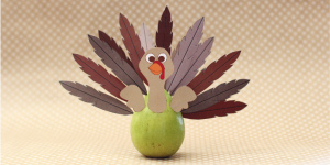 project turkey featured pic