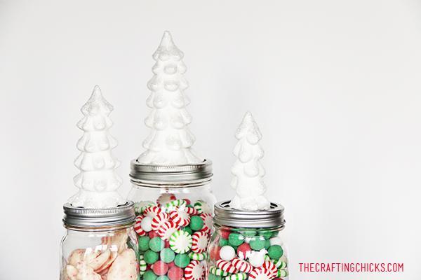 sm tree jars 6