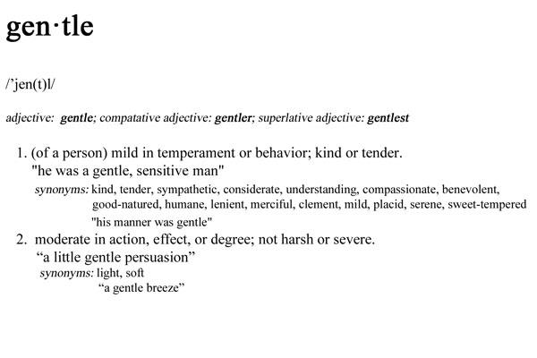 gentle-definition