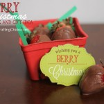 Wishing You A Berry Christmas Gift Tag