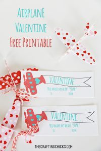 sm airplane valentine 2