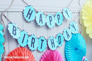 sm safari party 3