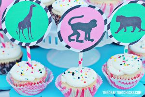 sm safari party 42
