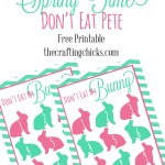 "Spring Time Don't Eat Pete!  ""Don't Eat My Bunny"" *Free Printable"