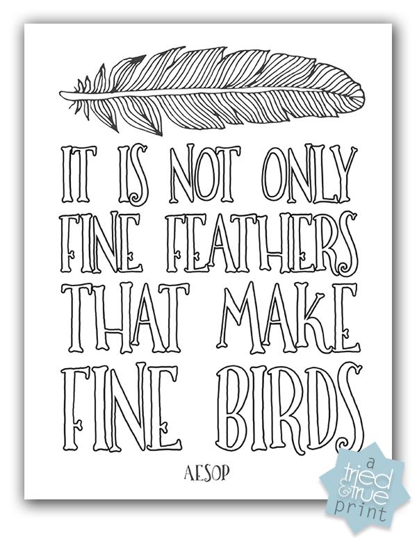 Aesop's Fine Birds Free Printable - Coloring Page