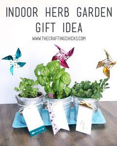 Sm herb garden 1 for Indoor gardening lesson