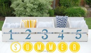 Summer Entertaining Kit