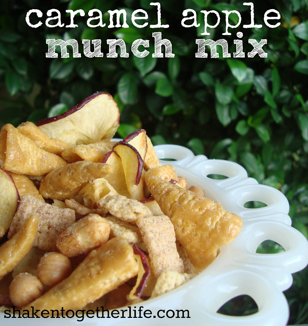 Caramel Apple Munch Mix from Shaken Together!