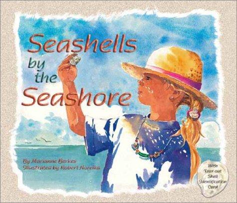 ocean seashells by the seashore
