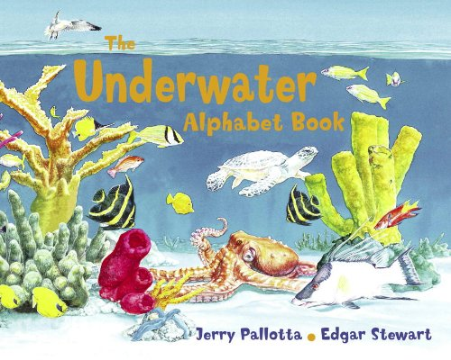 ocean the underwater alphabet book