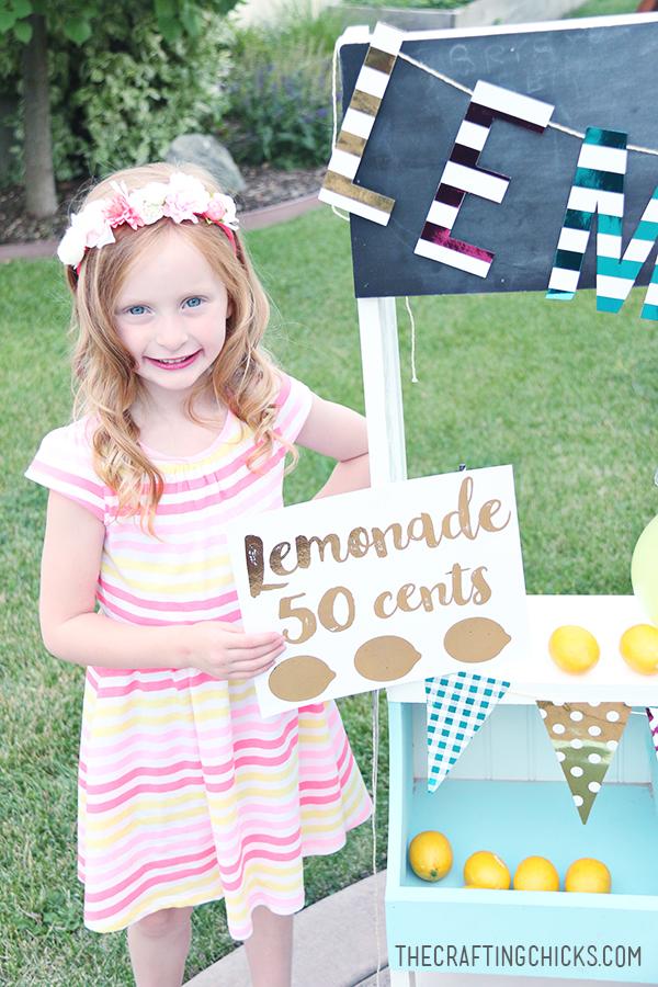 sm lemonade stand 8