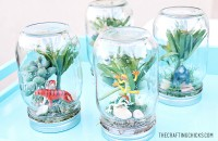 sm rain forest in a jar 4