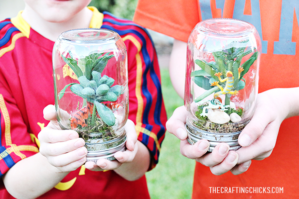 sm rainforest in a jar 1