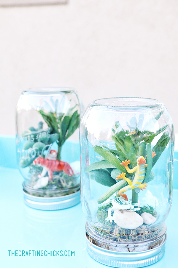 Rainforest in a Jar - great summer project for kids