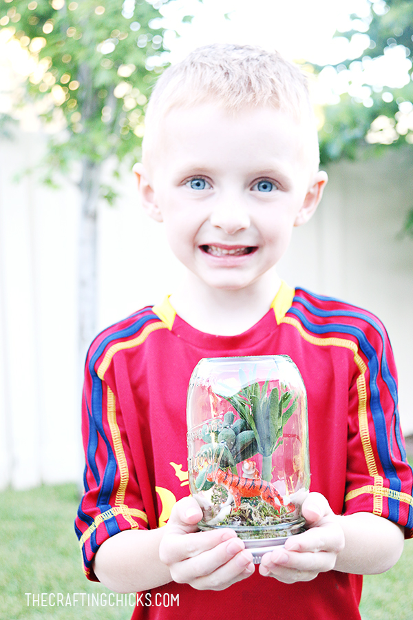 sm rainforest in a jar 9