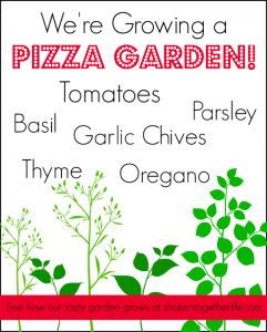 Pizza Garden Series at Shaken Together