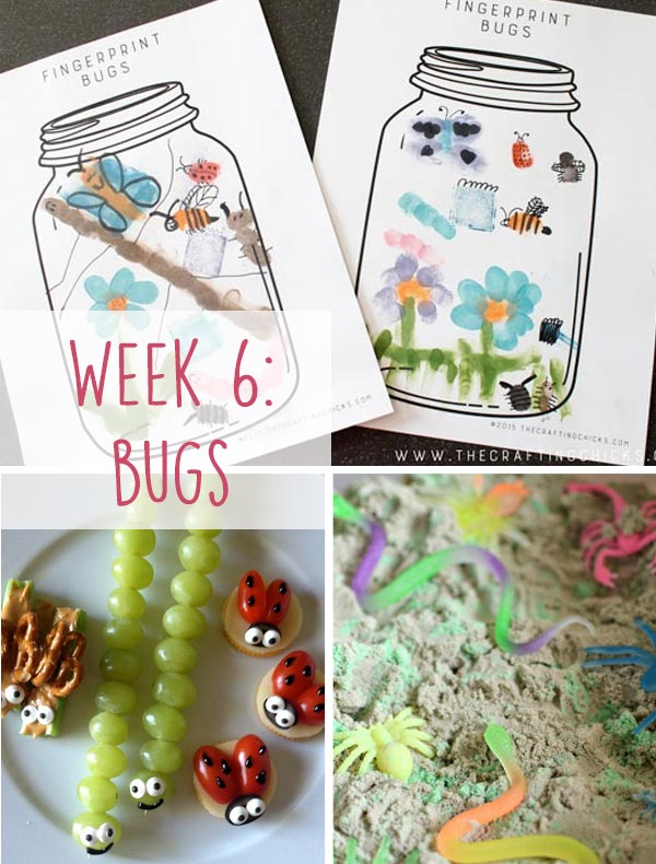 Bug Week. A list of books, crafts, activities and recipes to easily engage your kids.