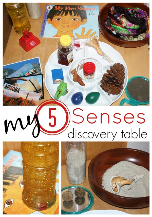 Senses Activity Discovery Table on 5 senses preschool printables