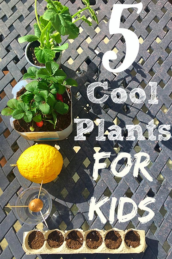 In the garden with kids activities and printables the for Gardening tips for kids
