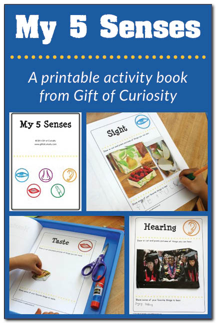 My 5 Senses - Activities and Printables - Touch, taste, smell, sight, sound... so many fun kids activities!