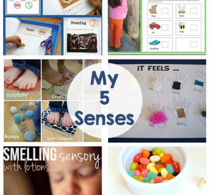 My 5 Senses – Activities and Printables