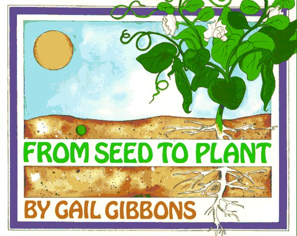 garden from seed to plant