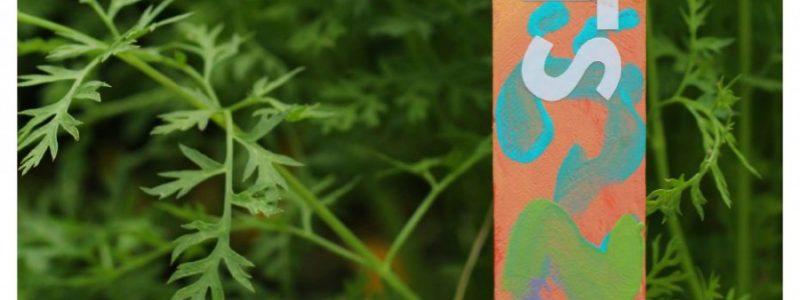 Kid Painted Garden Markers