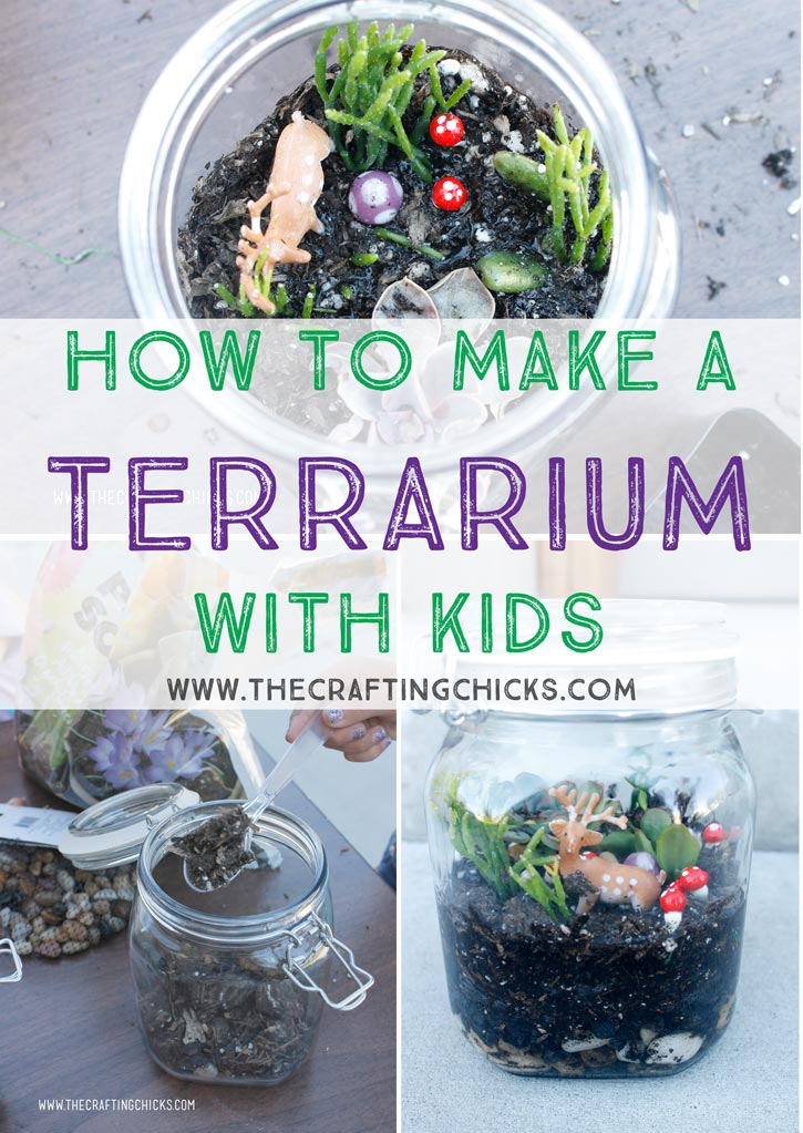 Terrarium-with-kids