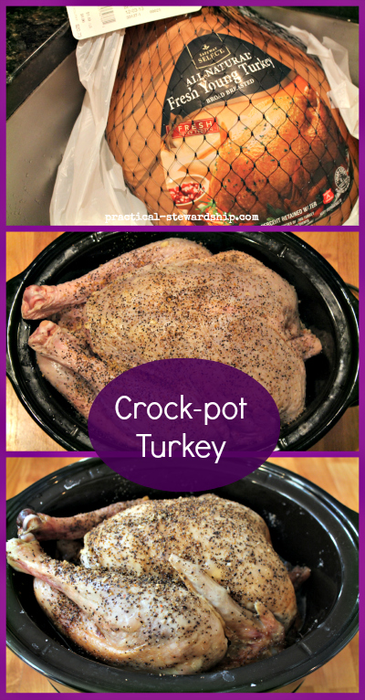 Favorite Thanksgiving Turkey Recipes