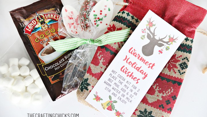 Hot Cocoa Kit Gift & Free Printable Tag