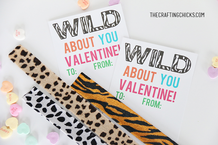 sm wild valentine 4